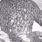 "The drawing displayed for ""The Chronicles of Everstate: foreseeing the future of the modern nation-state"" is a detail of the frontispiece of the book Leviathan by Thomas Hobbes, Wikimedia Commons."