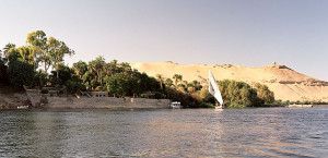 640px-Aswan,_Kitchener's_Island,_east_bank,_Egypt,_Oct_2004