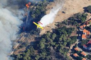 Mount_Carmel_forest_fire09
